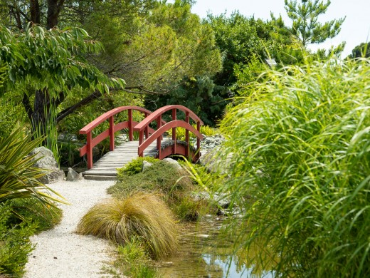 Bridge in Japanese Miyazu Garden, Nelson,